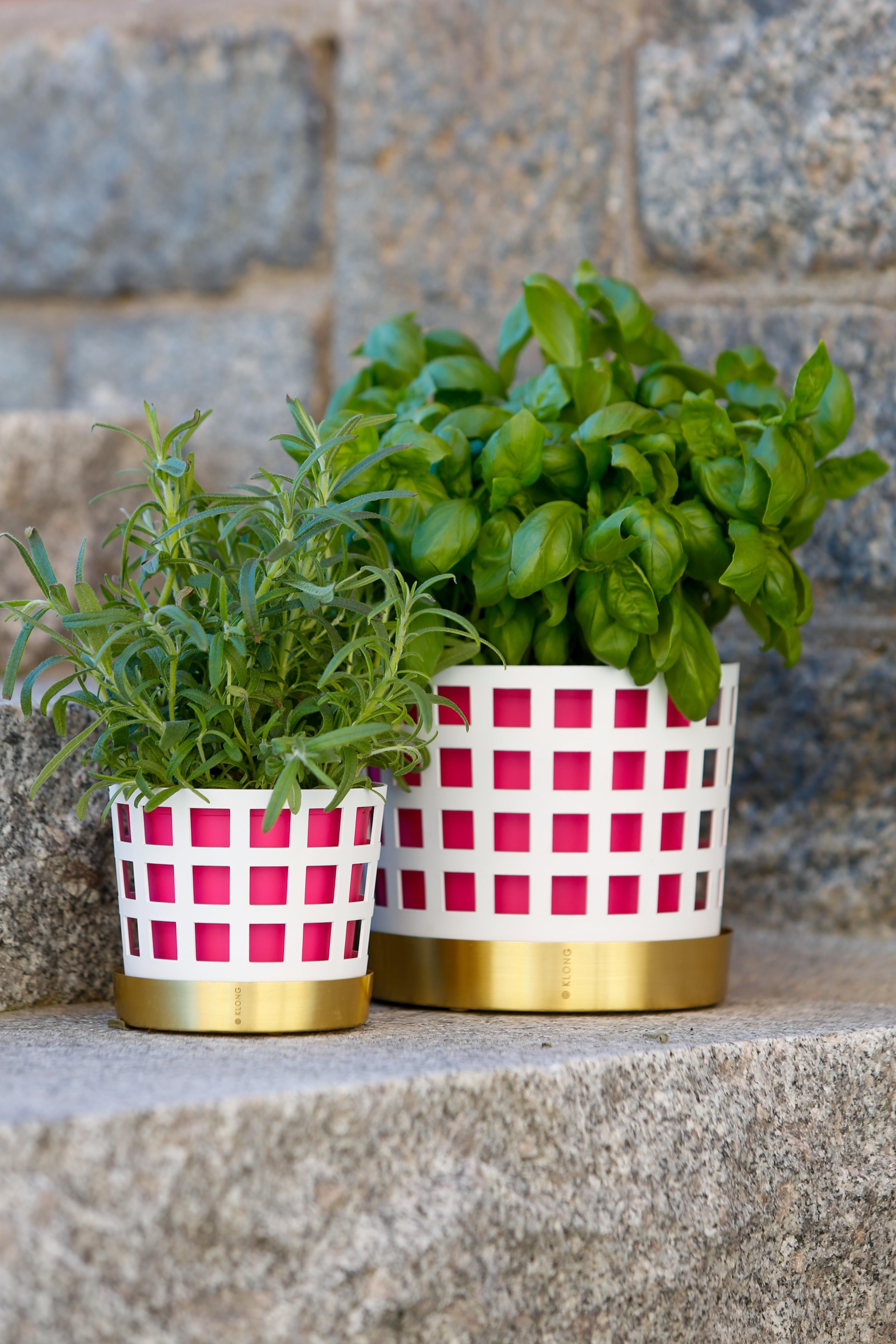 Trio Pink Inner Pot